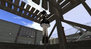 Second Life Hanging Pics